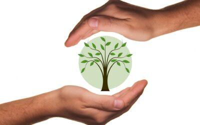 Huis verduurzamen: waar begin je?